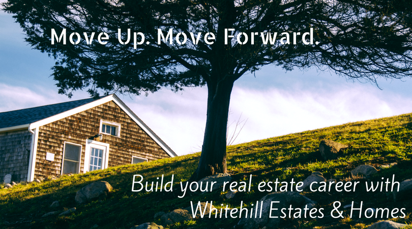 Join Our Team at Whitehill!