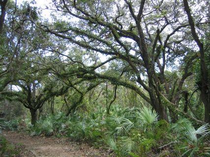 Dupuis Wildlife and Environmental Area