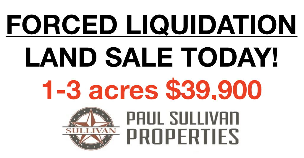 Forced Liquidation sale