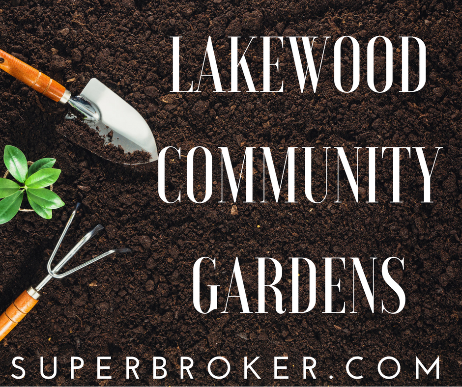 Do You Want to Buy or Sell a Home in Lakewood, CA? We'd love to help you find the perfect home in Lakewood, Long Beach, or the surrounding communities. When you're ready to start exploring your options, call us at 562-882-1581 to let us know what you need. We'll help you find it. In the meantime, feel free to explore our: Bellflower condos for sale Bellflower homes for sale Lakewood condos for sale Lakewood homes for sale Long Beach condos for sale Long Beach homes for sale Seal Beach condos for sale Seal Beach homes for sale