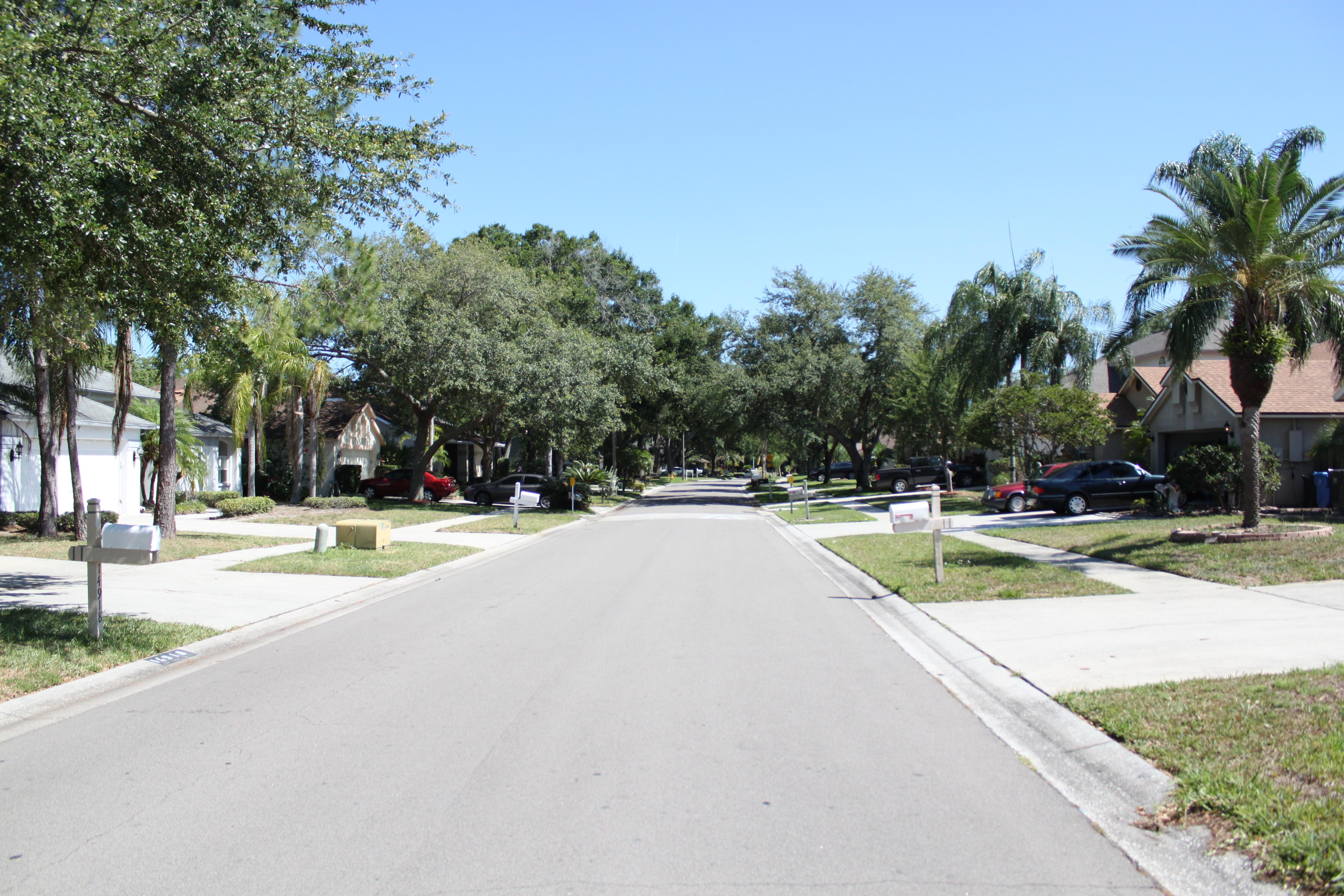 Eastbrook community view of road