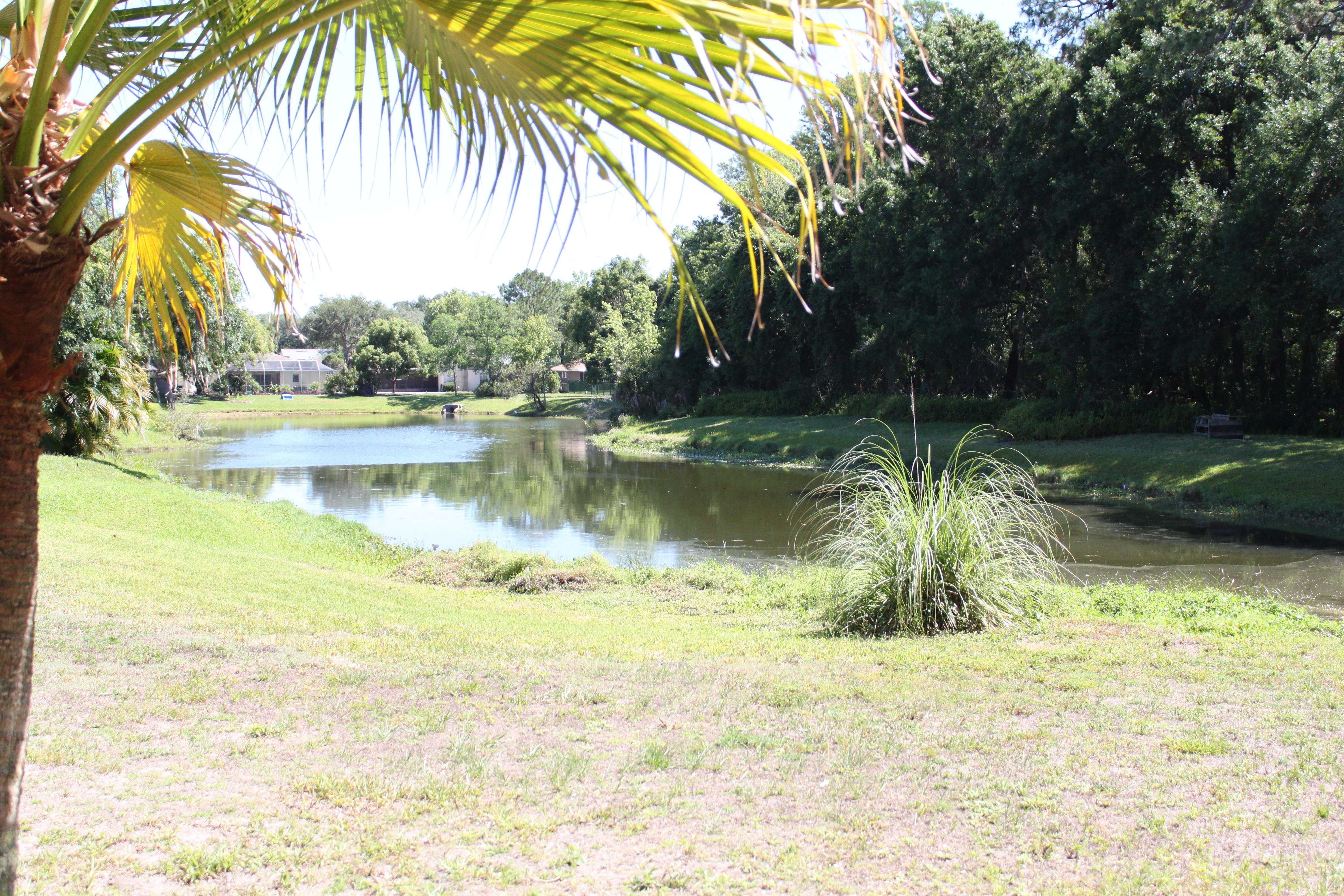 turtle Creek conservation area