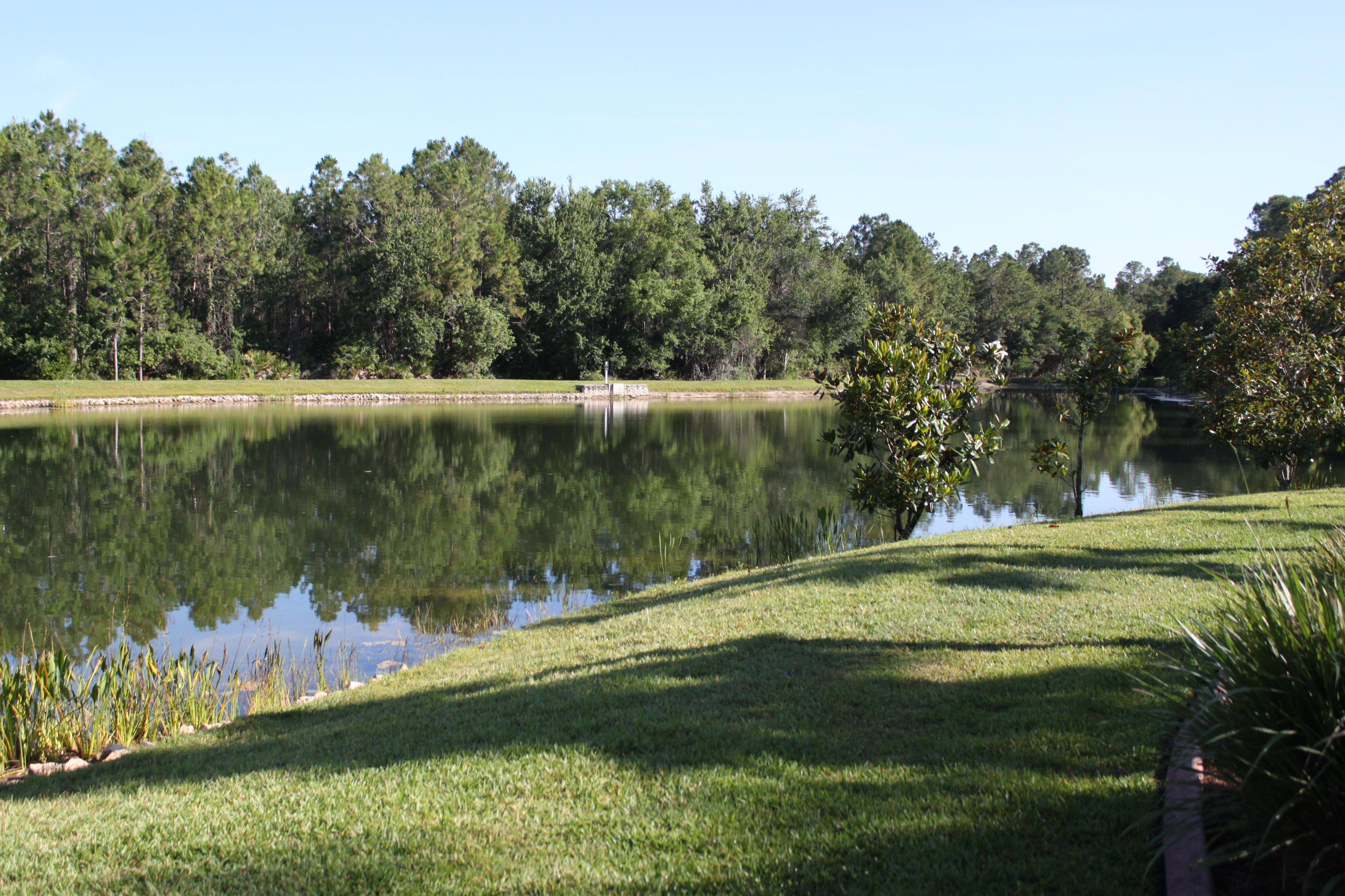 Westwood Lakes pond