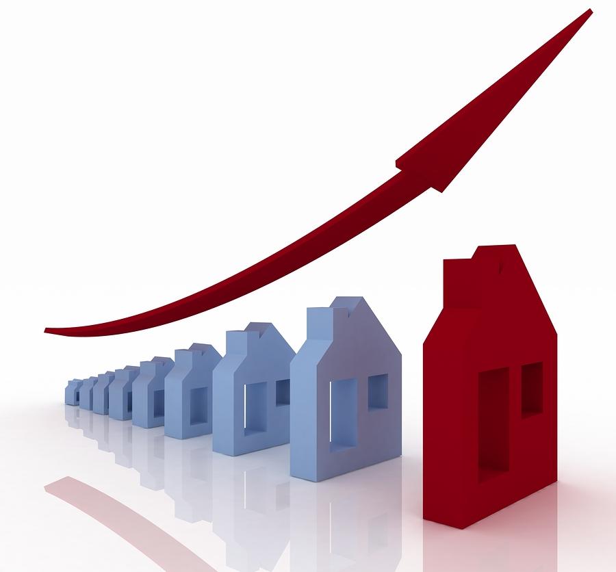 Real Estate Buyer Power in Tampa Florida