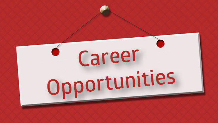 Careers at Tampa Home Group