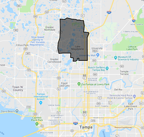 Lake Magdalene Homes For Sale Map Search