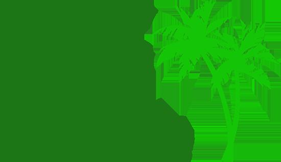 Tampa Florida real estate