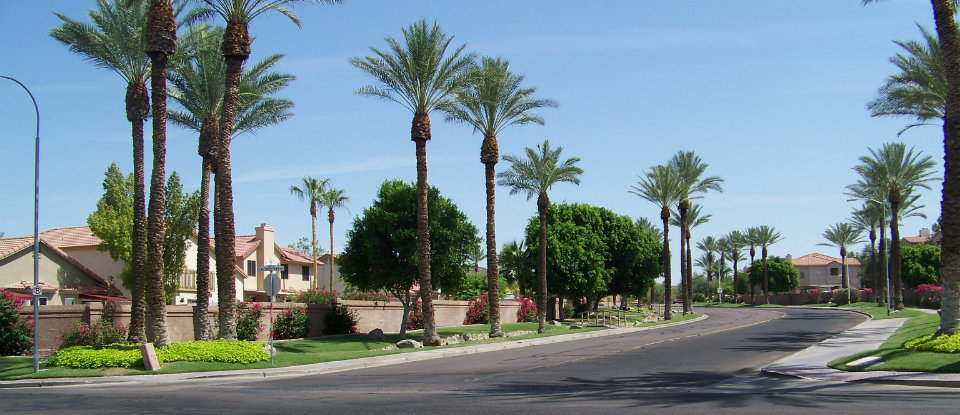 Homes for Sale in Ahwatukee