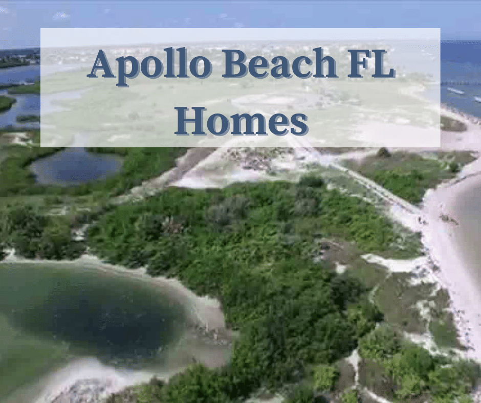 Apollo Beach Fl Homes