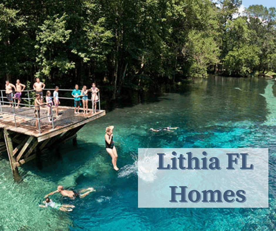 Lithia FL Homes