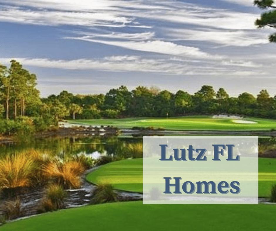 Lutz FL Homes