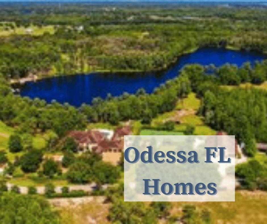 Odessa FL Homes