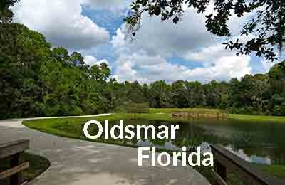 Oldsmar FL Homes