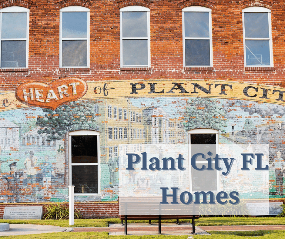 Plant City FL Homes