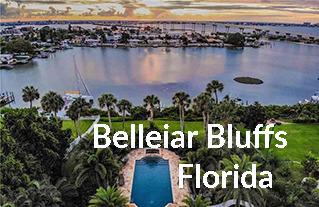 Belleair Bluffs FL homes for Sale