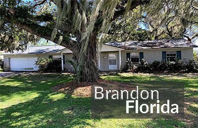 Brandon fl homes for sale