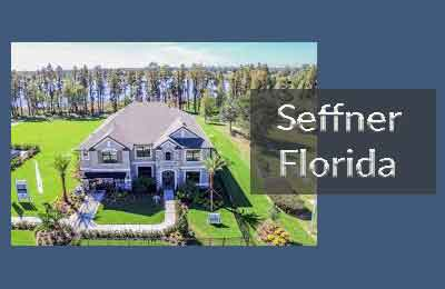 Seffner FL Homes for Sale