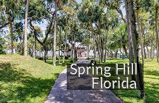 Spring Hill FL Homes