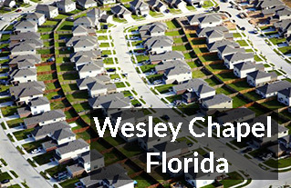 Wesley Chapel FL Homes