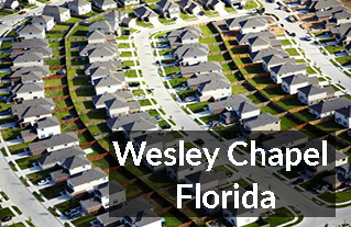 Wesley Chapel FL Homes