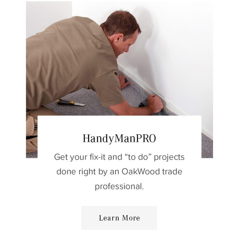 HandymanPro Services