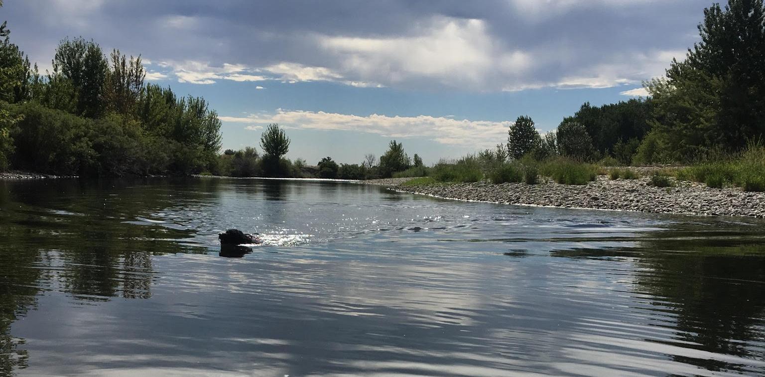 Boise River in Southeast Boise