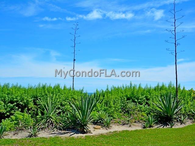 Boardwalk Condos Cocoa Beach, FL Terry Palmiter