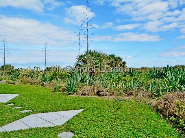 Buena Vista Condos Cocoa Beach, FL Terry Palmiter
