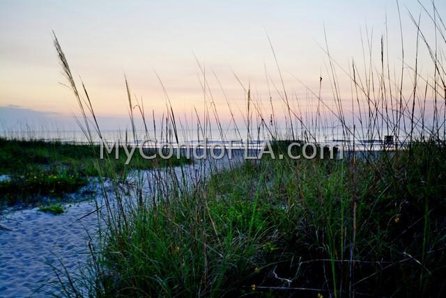 Sandcastles Condos Cocoa Beach, FL Terry Palmiter