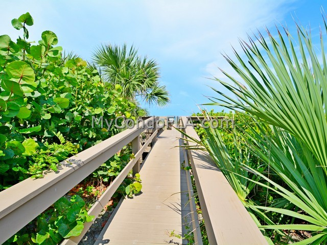Twin Towers Condos Cocoa Beach, FL Terry Palmiter