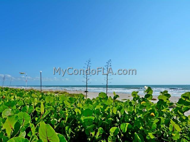 Wavecrest Condos Cocoa Beach, FL Terry Palmiter