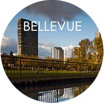 Bellevue Community Info
