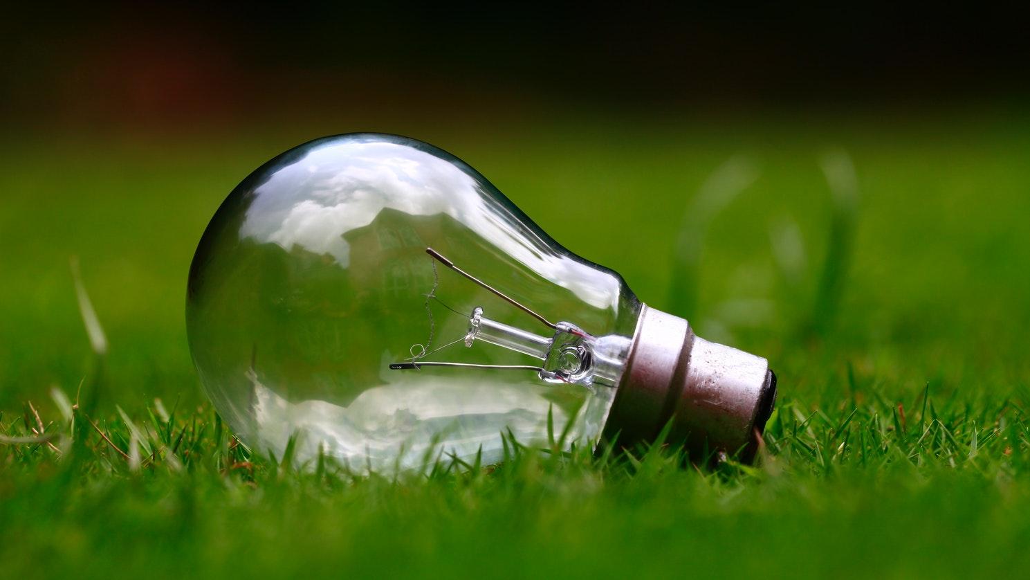 A lightbulb sitting in grass.