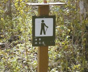 Hiking on Birchwood Trails