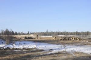 Prairie Creek Business Park Clearing