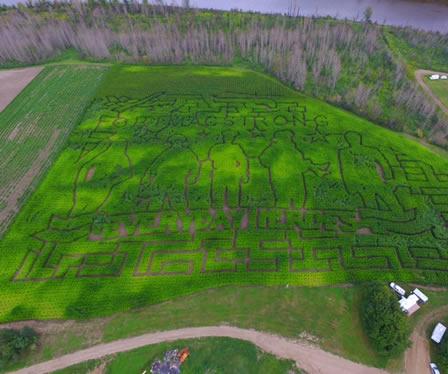 Draper Fort McMurray Community - Aerial View