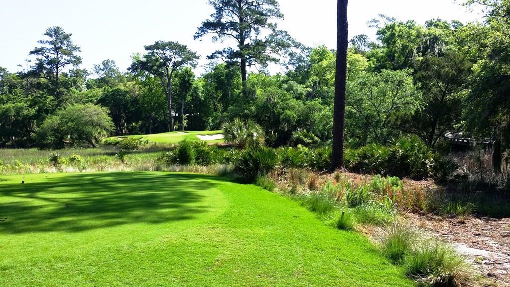Palmetto Bluff Golf
