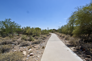 Find the best McDowell Mountain Ranch Real Estate and Homes