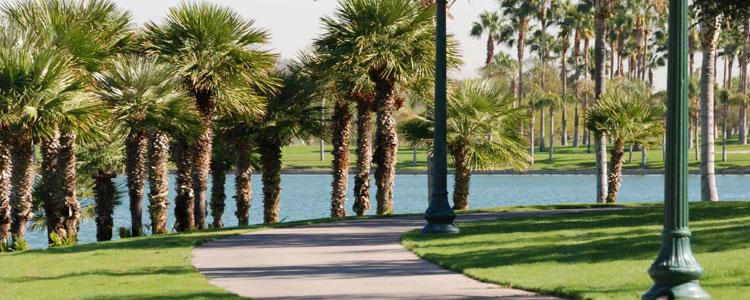 The best neighborhoods in Goodyear Arizona
