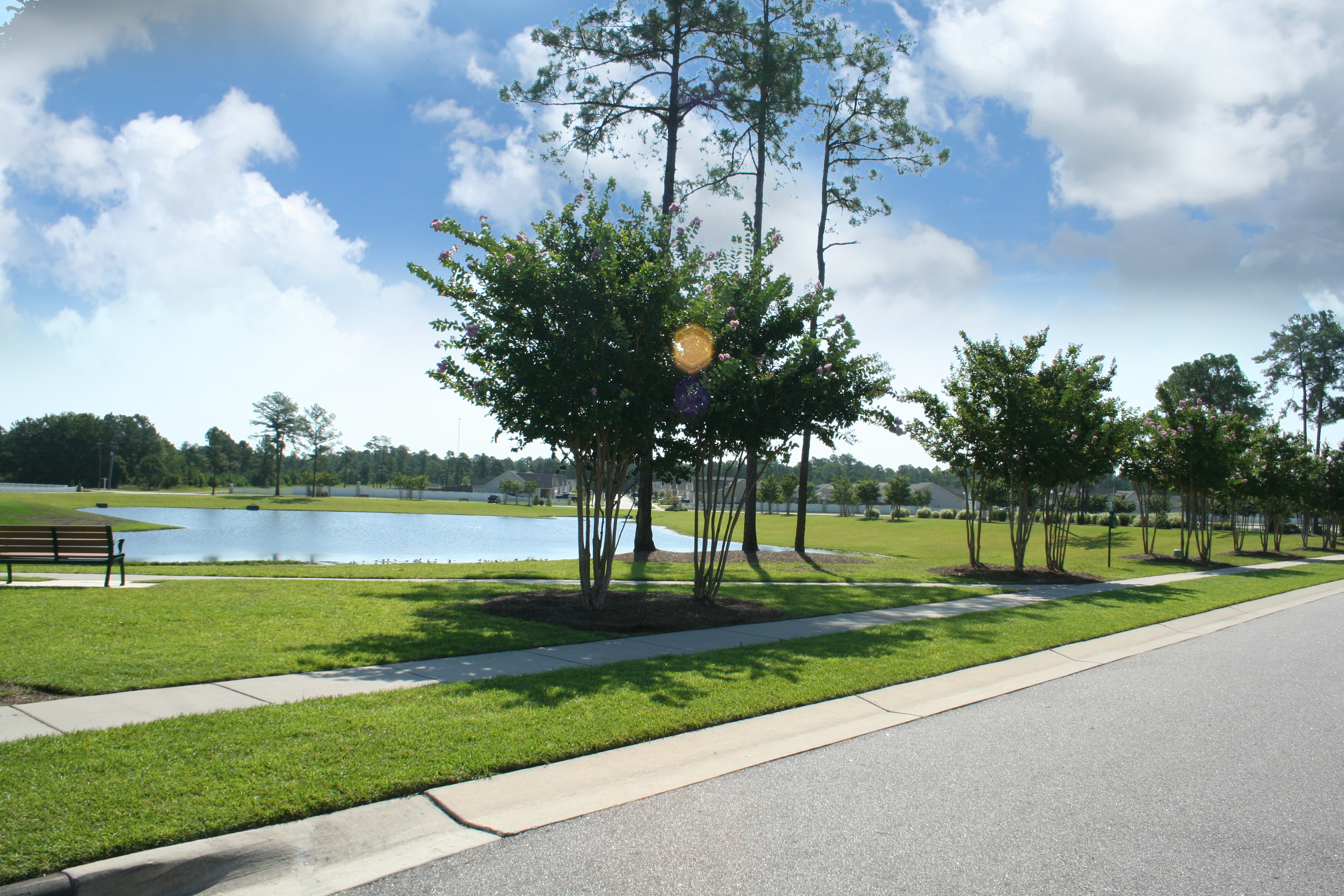 Windsor Park Open Space