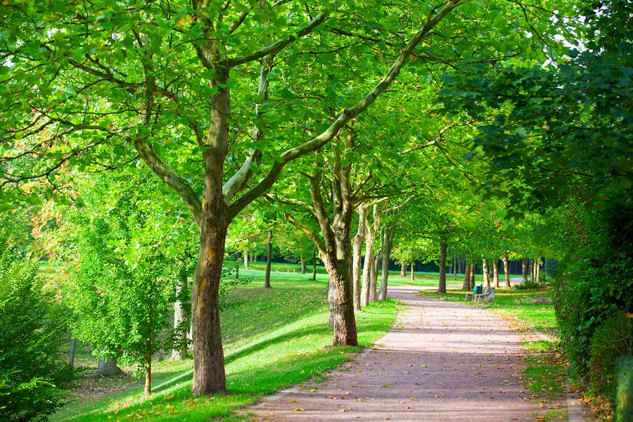 Visit Ev-Henwood Nature Preserve near Waterford real estate.