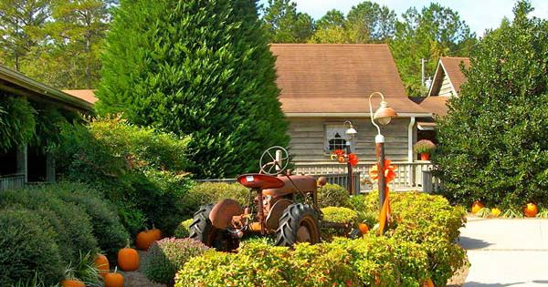 Mike's Farm in Beulaville, NC