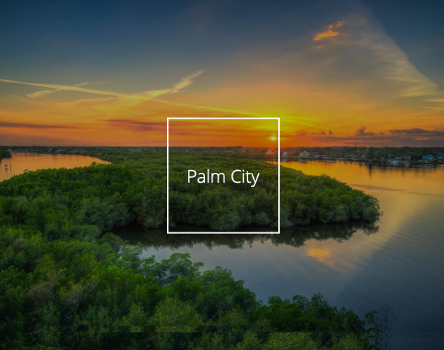Search Palm City Homes