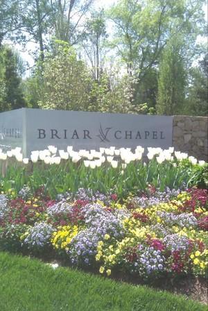 briar chapel homes