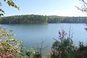 jordan lake pittsboro nc
