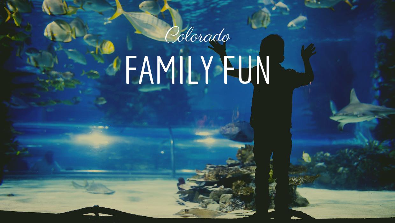Colorado Family Fun