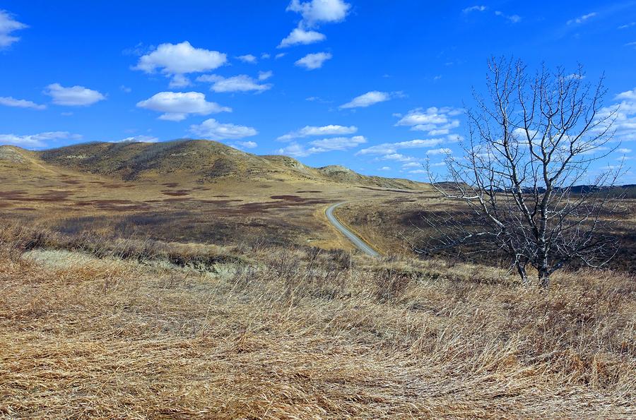 Go to the Glenbow near your Calgary home.
