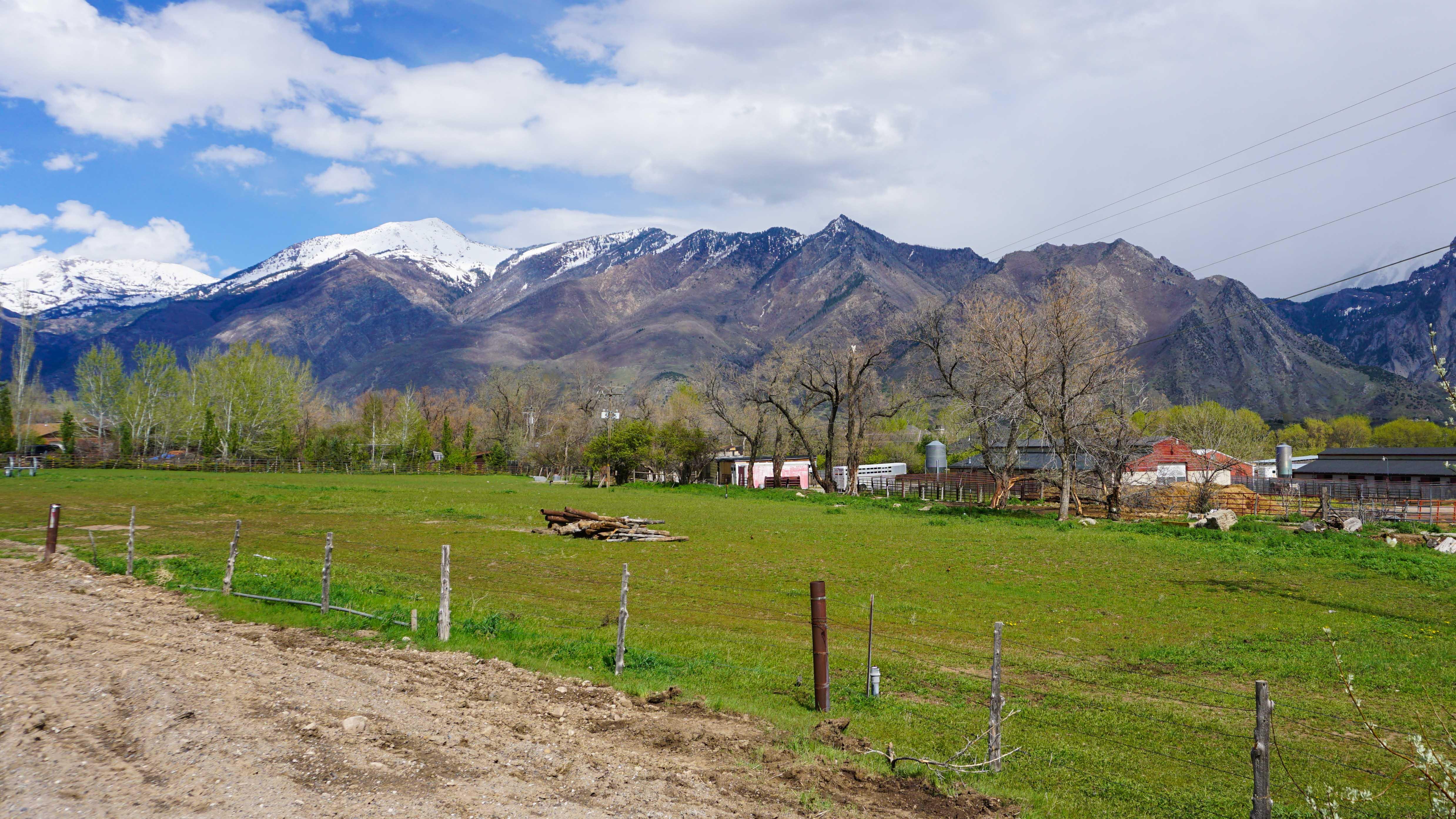 Provo Utah Property Search