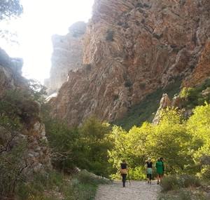 Provo Rock Canyon, Provo Utah homes for sale