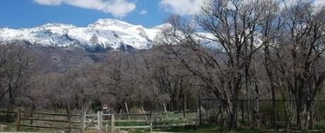 Whitby Woodlands Alpine Utah